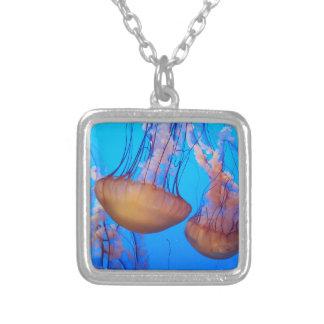 Beau collier de méduses