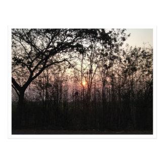 Beau coucher du soleil derrière la carte postale
