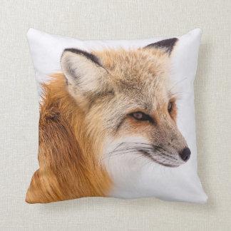 Beau coussin de Fox de Sly
