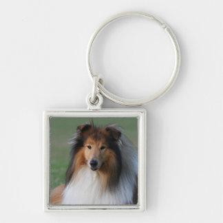 Beau porte - clé de portrait de chien de colley, porte-clés