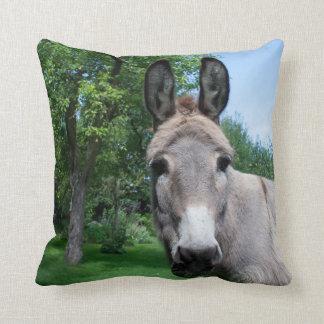 Beau portrait d'âne coussin