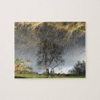 Beau puzzle d'arbre de photographie de réflexion