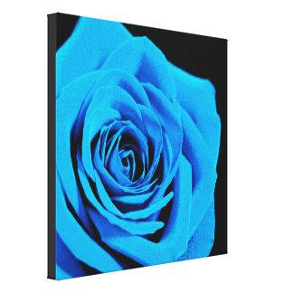 Beau rose de bleu toile