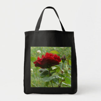 Beau sac de rose rouge