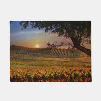 Beau tapis de porte de vignoble d'arc-en-ciel de