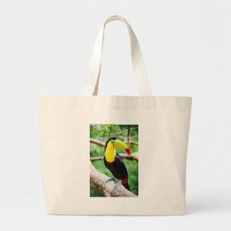 Beau toucan grand sac