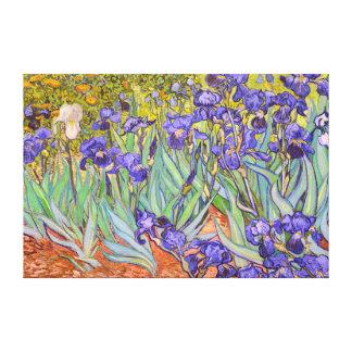 Beaux-arts de Vincent van Gogh d'iris Toiles