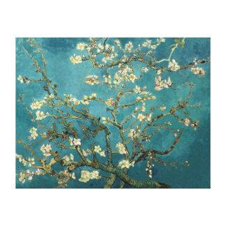 Beaux-arts se développants de cru d'arbre d'amande toiles
