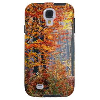 Beaux rayons de soleil colorés de forêt de chute coque galaxy s4