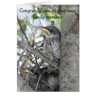 Bébé de félicitations de bébé nouveau dans le nid carte de vœux