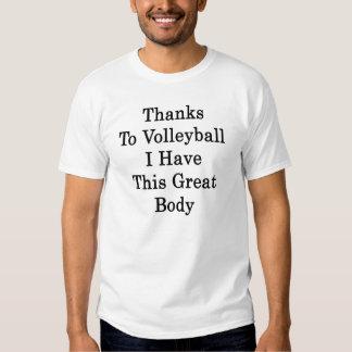 Bedankt aan Volleyball heb ik Dit Grote Lichaam Shirts