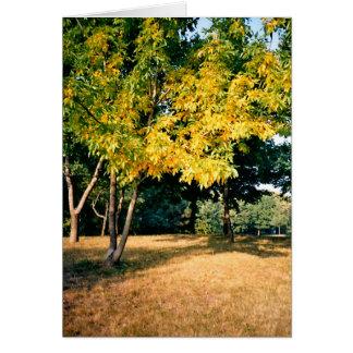 Bel arbre d'automne carte
