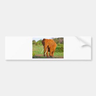 Bel éléphant orange autocollant de voiture