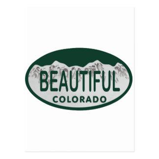 Bel ovale de permis du Colorado Carte Postale