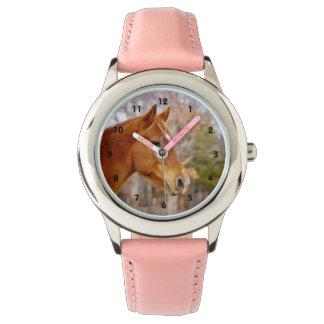 Belle montre de cheval de châtaigne montres bracelet
