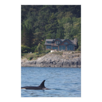 Belle orque d'épaulard dans l'état de Washington Papiers À Lettres