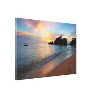 Belle toile enveloppée d'océan par scène pour la
