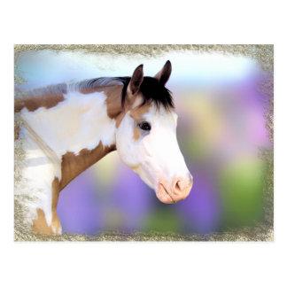 Belles cartes postales de cheval