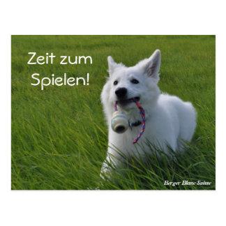 Berger Blanc Suisse carte postale