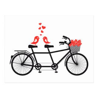 bicyclette tandem avec les inséparables mignons carte postale