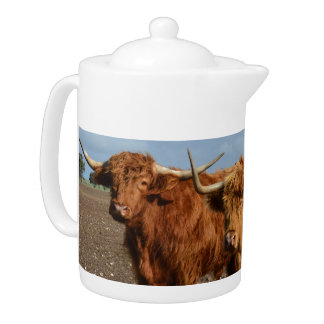 Big_Brown_Highland_Cows, _Porcelain_Teapot.