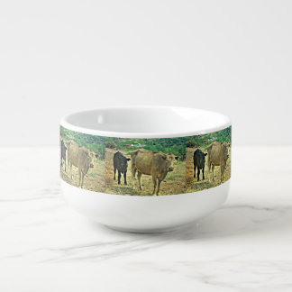 Bisbee effraye la tasse de soupe