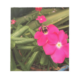 Bloc-note abeille