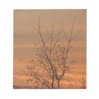 Bloc-note Branches d'arbre de petit morceau de coucher du