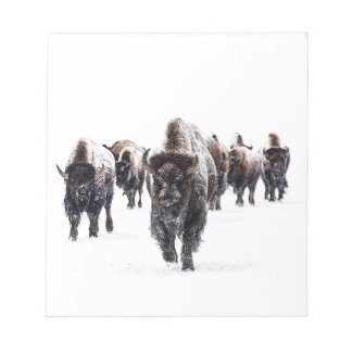 Bloc-note Buffalo