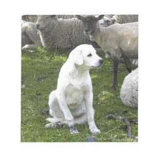 Bloc-note Chien d'Akbash et troupeau de moutons