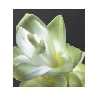 Bloc-note le baiser blanc d'amour de fleurs de fleur