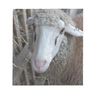 Bloc-note Moutons avec le foin