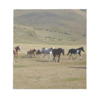 Bloc-note Troupeau de chevaux