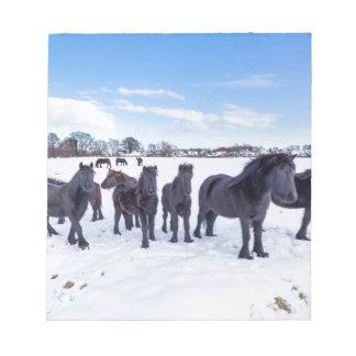 Bloc-note Troupeau de chevaux noirs de frisian dans la neige