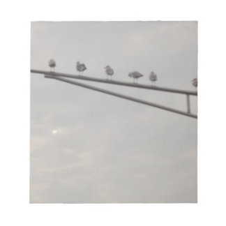 Bloc-note Un troupeau des mouettes