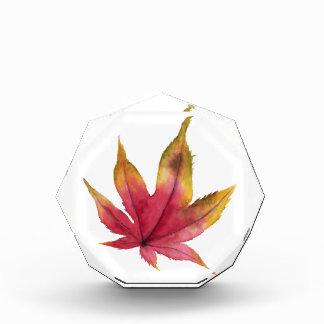 Bloc Photo Peinture d'aquarelle de feuille d'érable d'automne