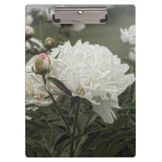 Bloemen Klembord