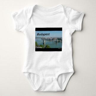 Body Budapest-horizon. [kan.k]