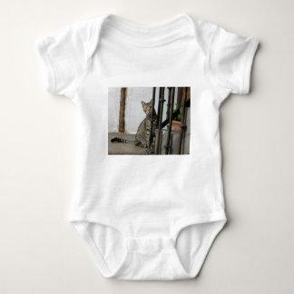 Body Chemise de bébé de chat tigré