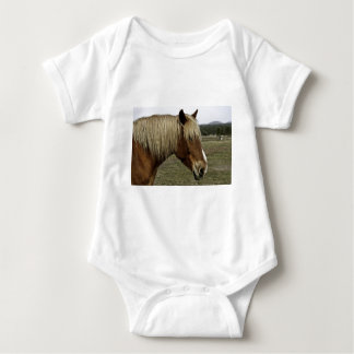 Body Cheval d'or