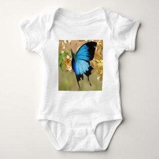 Body Papillon d'Ulysse