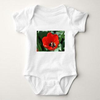 Body Perception de tulipe