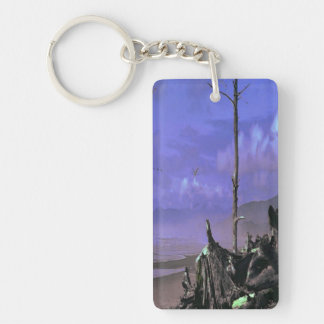 Bois de flottage sur la plage porte-clés
