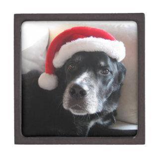 Boîte À Babioles De Première Qualité Mélange de rottweiler de Père Noël Chien-Labrador