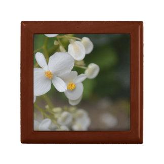 Boîte À Souvenirs Bébé floral