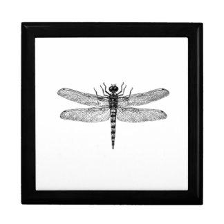Boîte À Souvenirs Belle et simple libellule vintage