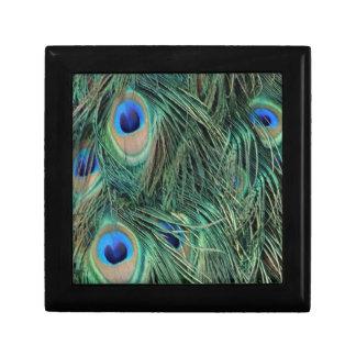 Boîte À Souvenirs Belles plumes de paon
