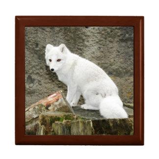 Boîte À Souvenirs Boîte-cadeau blanche de tuile de renard arctique