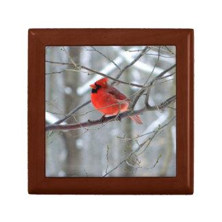 Boîte À Souvenirs Boîte-cadeau en bois cardinale gaie