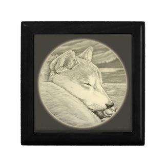Boîte À Souvenirs Boîtes d'amoureux des chiens de boîte d'art de